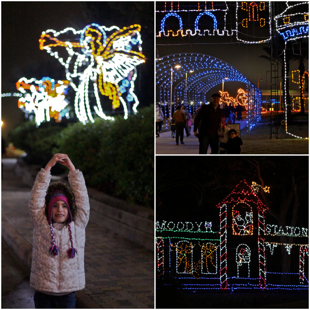 MG Festival of Lights