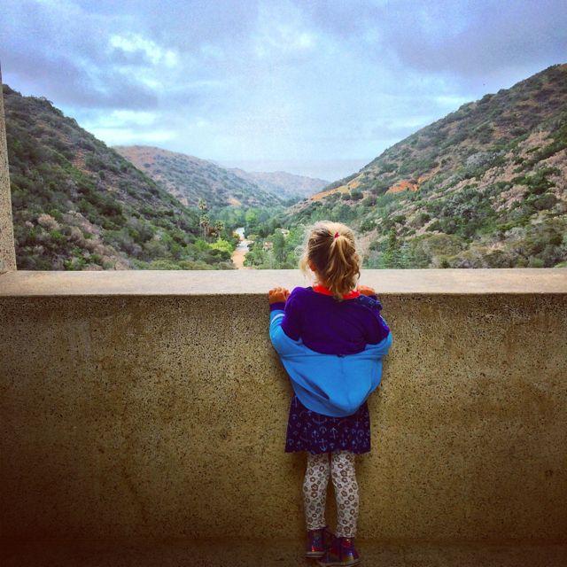 Wrigley Botanic Garden Catalina
