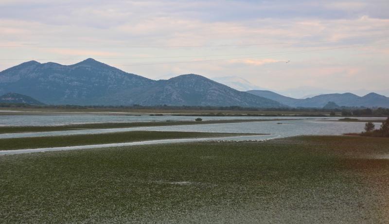 lakeskadar
