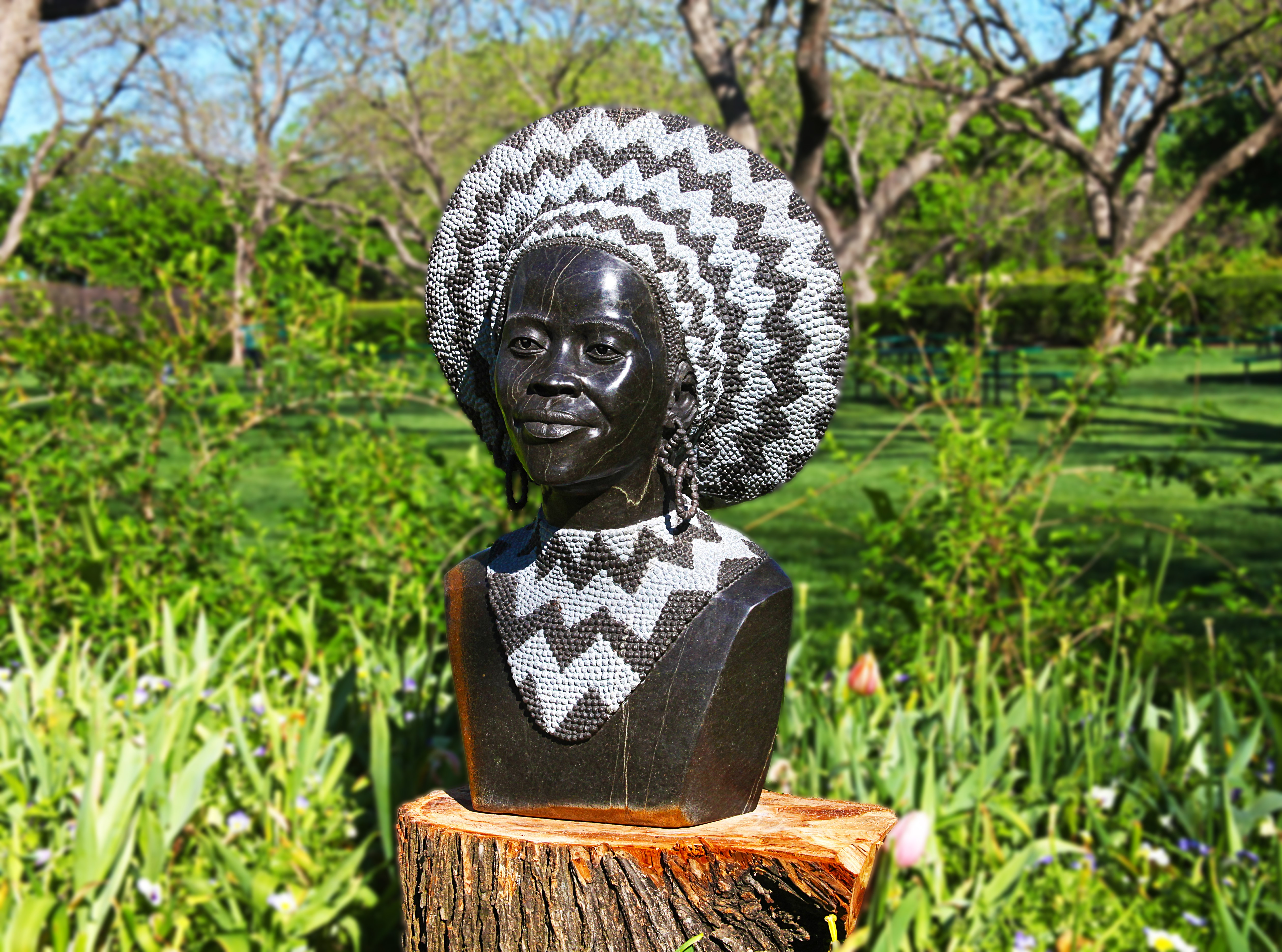 Dallas Arbo Zulu Queen, Tafadzwa Tandi